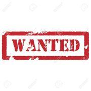 Suche Arbeitsstelle Ab Sofort
