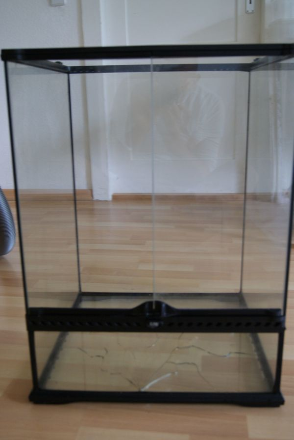 Exo Terra Glasterrium 45x45x60 cm