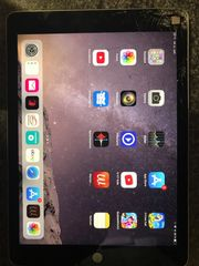iPad Air 2 Display Bruch