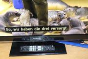 Panasonic TV TX-L32EW5 mit Ersatz -