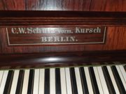 Klavier- Schnäppchen