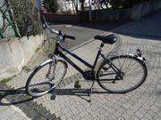 28 Damen Fahrrad Rabeneick Vabene