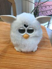 Furby Roboter