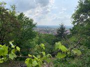 Schönes ruhiges Gartengrundstück Heidelberg-Hdschuhsheim 1208