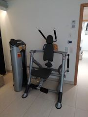 Hoist RS-1601 Fitness Kraftstation Abdominal
