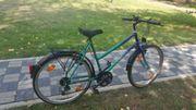 Damen fahrrad 26z 7g