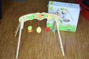 Hape Entdecker-Insel eco toys Baby