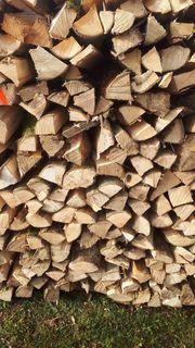 Brennholz Esche RM