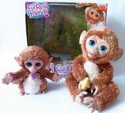 Äffchen mit süßem Affenbaby von