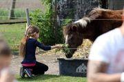 Reiterferien für Kinder auf dem