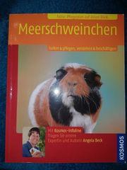 Infobuch zur Meerschweinchen Haltung und