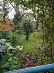 Kleingarten schrebergarten freizeitgrundstück