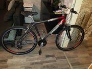 Fahrrad Bellini 28 zoll