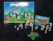 Hirtenjunge mit Kühen Playmobil 3077