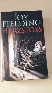 Joy Fielding Herzstoss