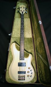 Ibanez Musician Bass Ungespielt