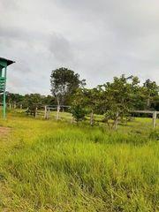 Brasilien 50 Ha Tiefpreis-Grundstück Region