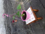 Blumenhocker mit Kacheln ausgelegt