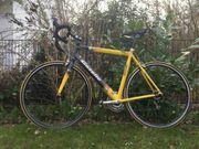 Rennrad Gazelle Vuelta RH 56