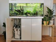 Juwel Aquarium 180l