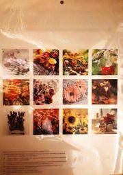 Kalender Blumen 2021 neu