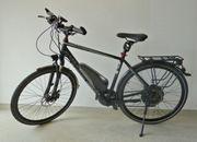 Herren E-Bike Lavida Plus