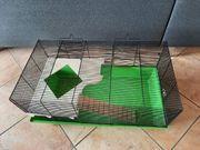 Hamsterkäfig in Top Zustand