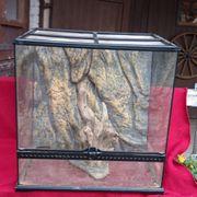 Terrarium aus Glas mit Zubehör