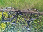 Damen Raleigh E Bike