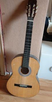 Gitarre Singer C-391
