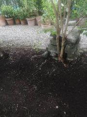 Garten und Haus hilfe
