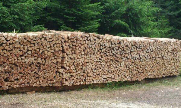 Brennholz hart u weich trocken