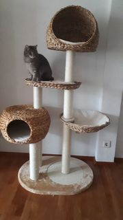 Katzenbaum unbenutzt