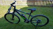 E-bike Mountainbike 29 Zoll Gebraucht