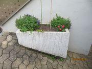Stabiler Blumentrog aus Beton