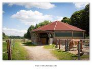 Pferdebox auf Reiterhof ab 16