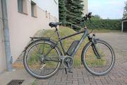 Fischer E-Bike TREKKING Herren ETH