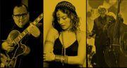 Jazz Trio Jazzsängerin Swing Jazztrio