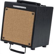 Verstärker Troubadour T20 -20Watt - Gesang Gitarre