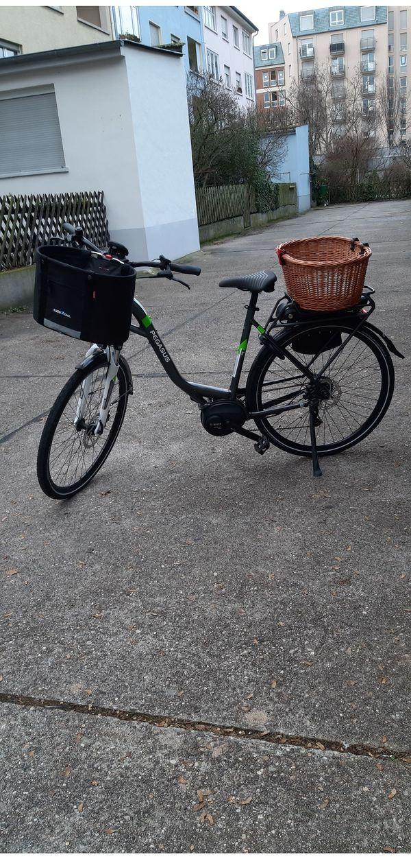 E-City-Bike Pegasus Solero ESL