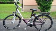 Raleigh City TiefeinsteigerE-Bike 28 Zoll