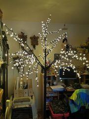 leuchtender Kirschbaum