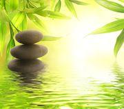 Wellnessmassage relax pur