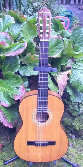 Gitarren/-zubehör - Schöne Konzertgitarre klassische Nylonsaiten Gitarre