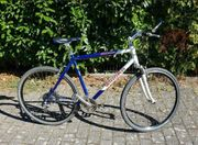 Winora 28 Trekkingrad Crossrad Fahrrad