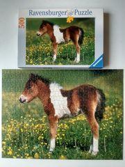 Ravensburger Puzzle 141333 Shetlandpony 500
