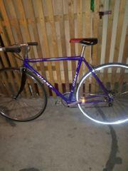 Damenrennrad zu verkaufen