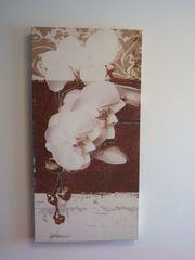 Leinwand Leinwanddruck Orchidee Bild auf