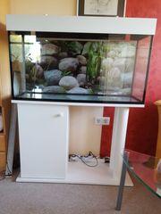 Aquarium mit Unterschrank und LED-