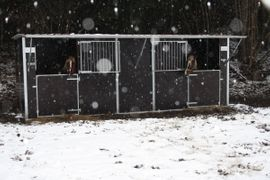 fahrbare Weidehütte Außenbox Weideunterstand: Kleinanzeigen aus Aßlar - Rubrik Pferdeboxen, Stellplätze